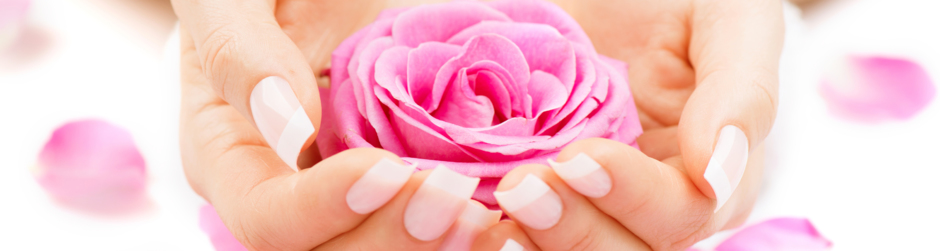 Frau hält eine pinke Rose in beiden Händen.